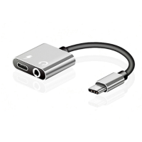 Robotsky  Type-C Adapter Silver