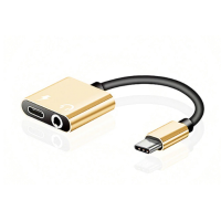 Robotsky  Type-C Adapter Gold